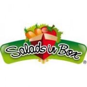 saladsinbox plaga - copia
