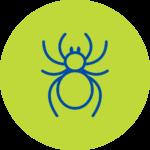 Plagas Arañas Fumigación
