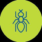 Plagas Hormigas Fumigación Culiacán