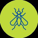 Plaga Mosquitos Fumigación