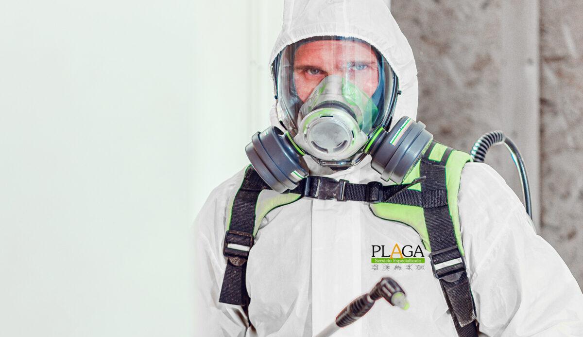 seguridad covid prevencion plagas