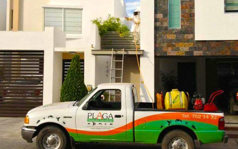 Plaga Servicio Especializado casa Plagas Fumigación